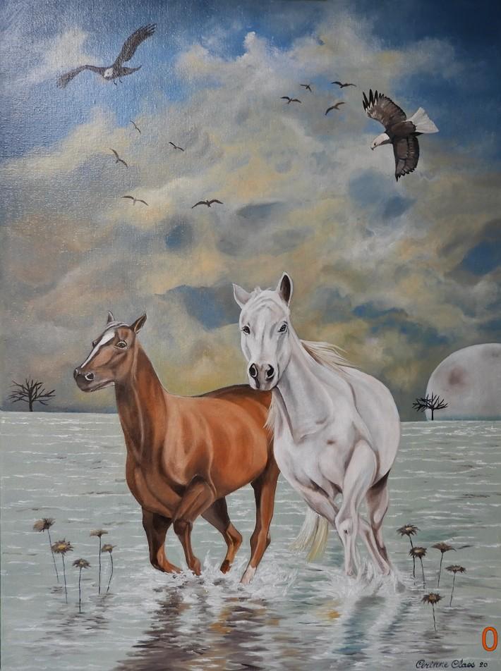Paardenkoppel 1 juni