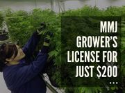 MMJ Growers License For Just $200