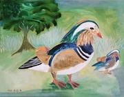 Exotic Duck & Her Baby