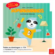 CRIANÇAS: Dominguinhos Online (Matosinhos): Dá uma folga aos teus pais e arruma lá os brinquedos!