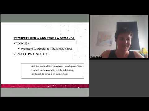 AJ   Aspectes pràctics de la tramitació dels procediments de família. Sessió 1