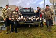 1 Scoter, 3 Eiders, 20 Houlnds and 4 turrs.
