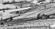 Neve in collina