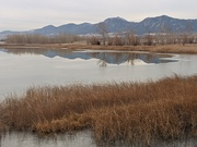 Early morning view of Flatirons from Coot Lake