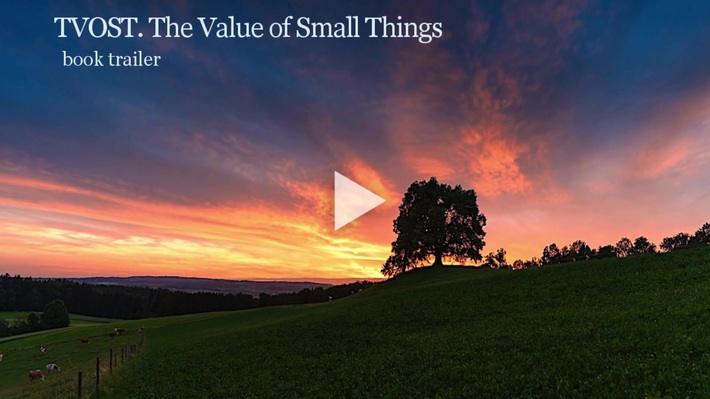 TVOST. The Value of Small Things