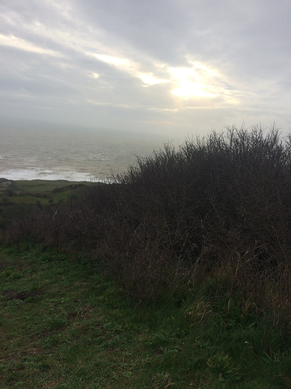 Isle of Wight Oct 2020 St Catherine's Down, Wydcombe & Knowles Farm 29.10.20