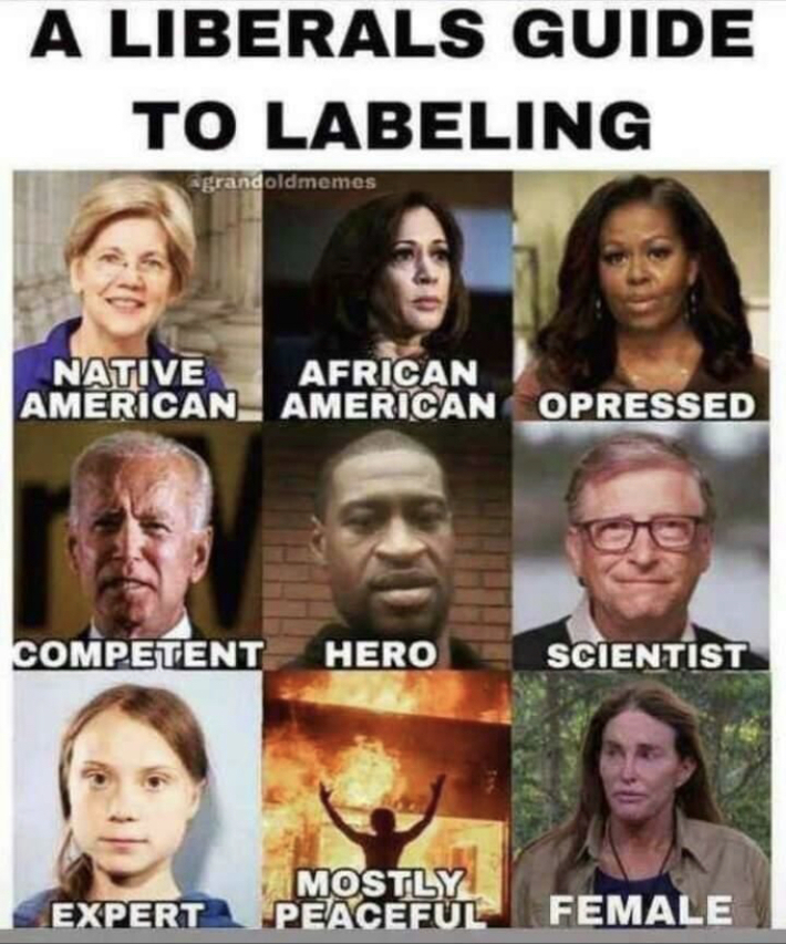 Idiot Liberals!