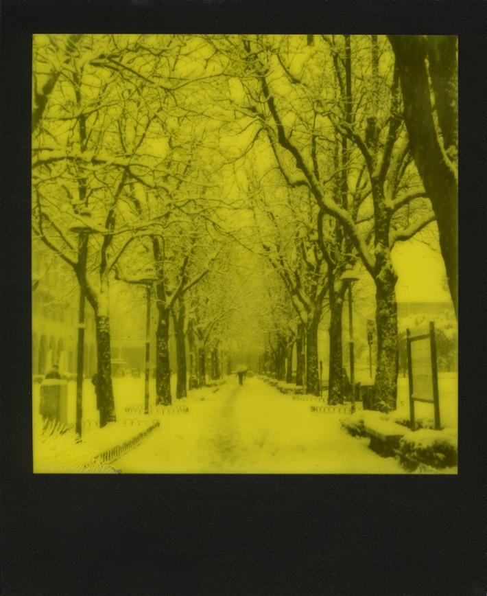 Winter Wonderland_1