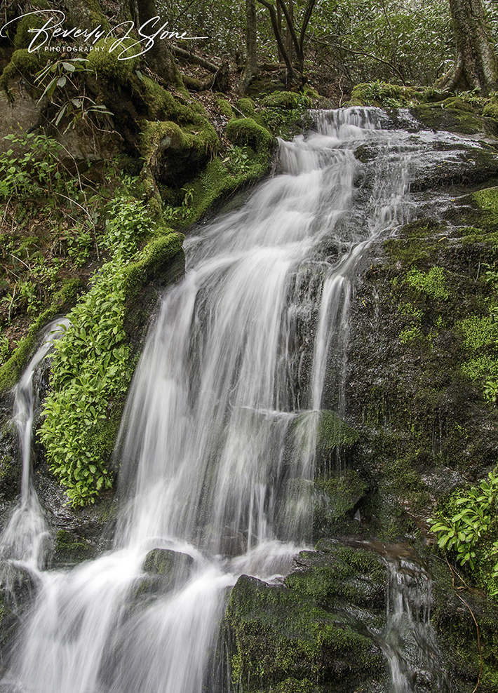 Waterfall along Hwy 441 in the GSMNP
