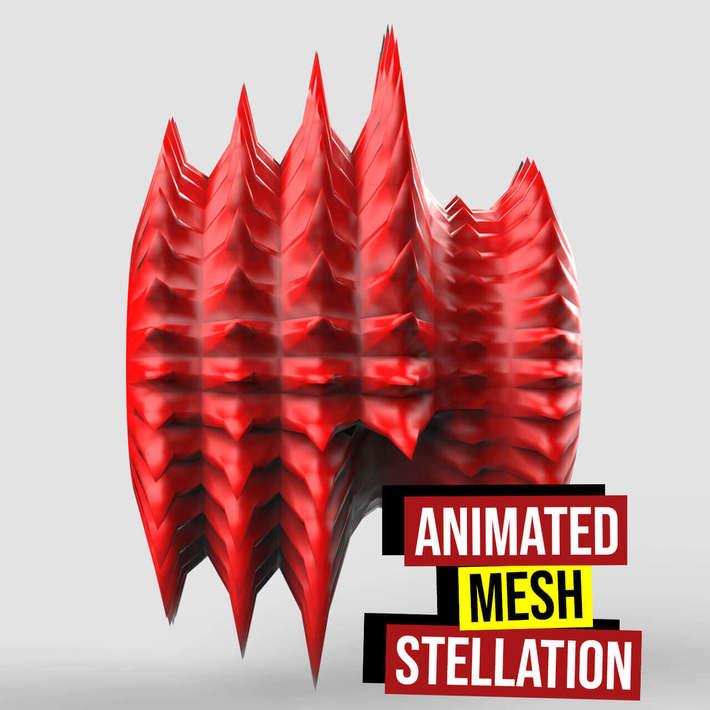 Animated Mesh Stellation