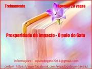 TREINAMENTO   -  PROSPERIDADE DE IMPACTO O PULO DO GATO