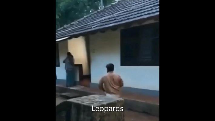 Leopards beat Chiefs