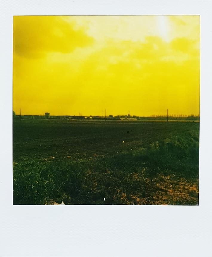 La pianura Lombarda in giallo
