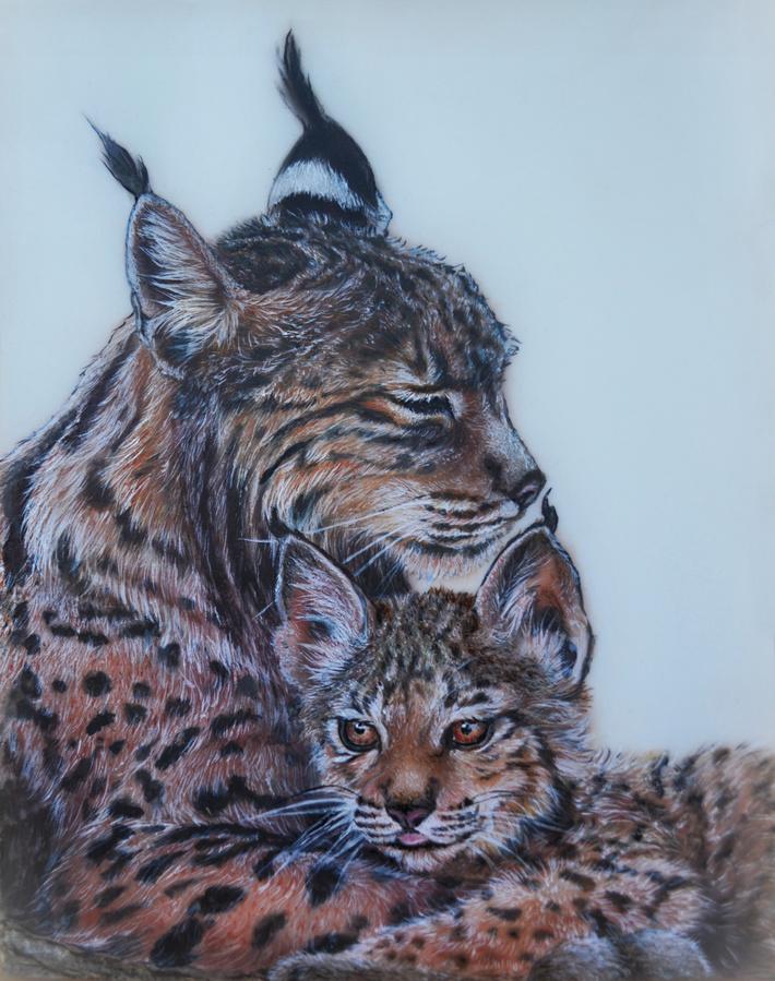 Iberian Lynx Mama & Baby