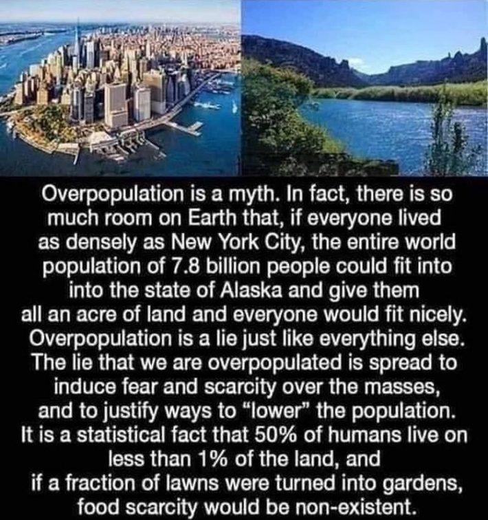 overpopulation-1-768x818